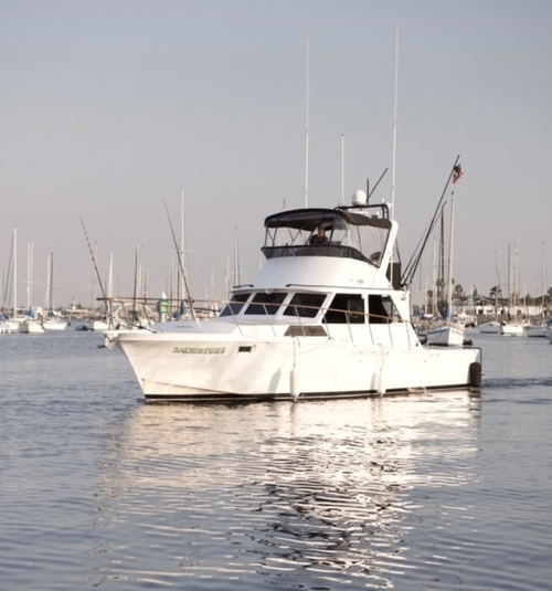 Point Loma Sportfishing - San Diego, CA