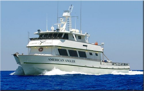 American angler for Point loma fishing report