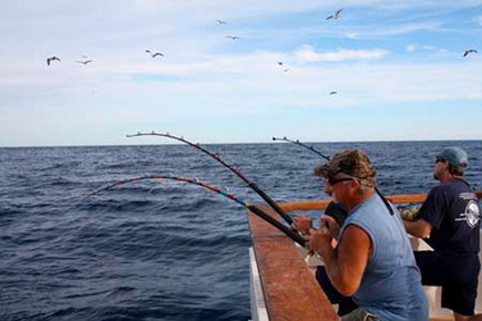 Diego Fishing on Owner Ken Price Captain Kevin Osborne Conditions Schedule Photos